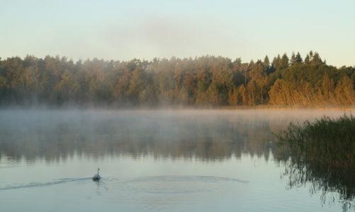 Fotoreportage: Döllnsee im Herbst